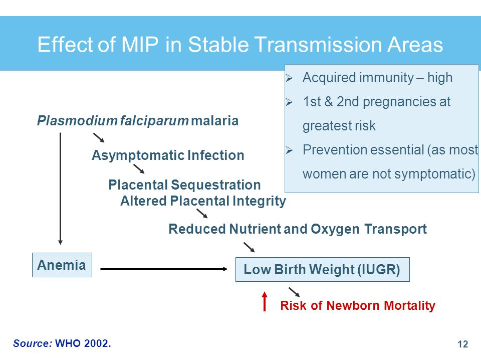  Acquired immunity – high  1st & 2nd pregnancies at greatest risk  Prevention essential (as most women are not symptomatic) Effect of MIP in Stable
