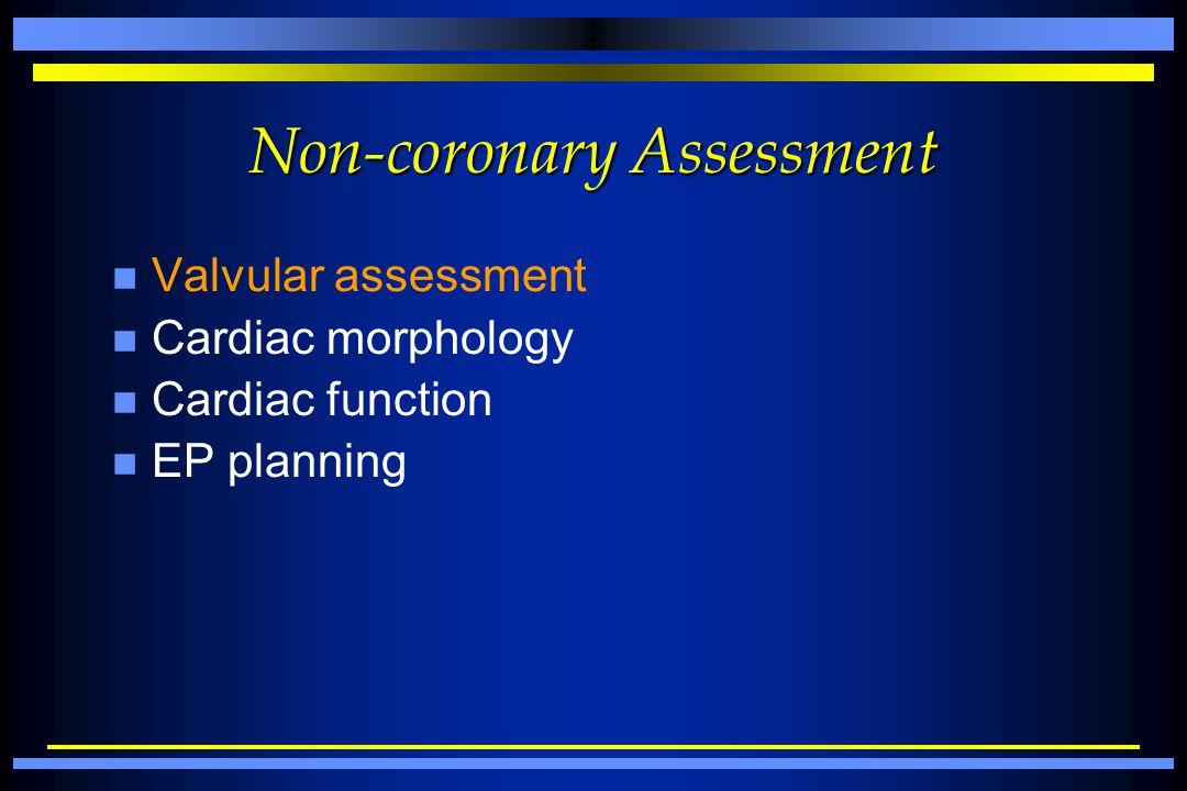 Non-coronary Assessment n Valvular assessment n Cardiac morphology n Cardiac function n EP planning