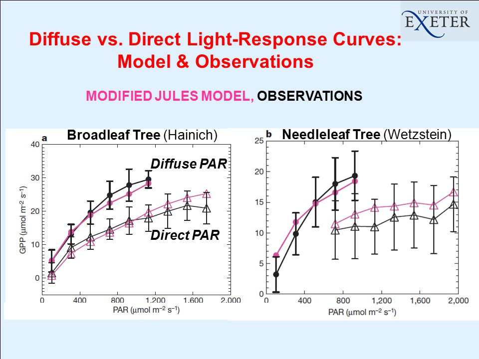 Diffuse vs. Direct Light-Response Curves: Model & Observations MODIFIED JULES MODEL, OBSERVATIONS Direct PAR Diffuse PAR Broadleaf Tree (Hainich) Need