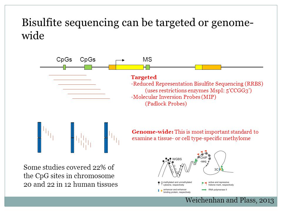 Targeted Bisulfite Sequencing Padlock capture This method simultaneously captures and amplifies large numbers of regions of interest from genomic DNA.
