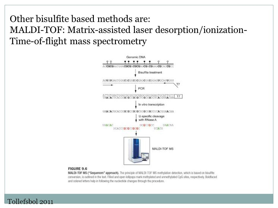 Other bisulfite based methods are: MALDI-TOF: Matrix-assisted laser desorption/ionization- Time-of-flight mass spectrometry Tollefsbol 2011