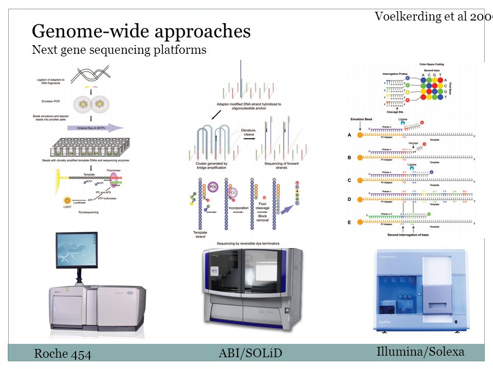 Roche 454 ABI/SOLiD Illumina/Solexa Genome-wide approaches Next gene sequencing platforms Voelkerding et al 2009