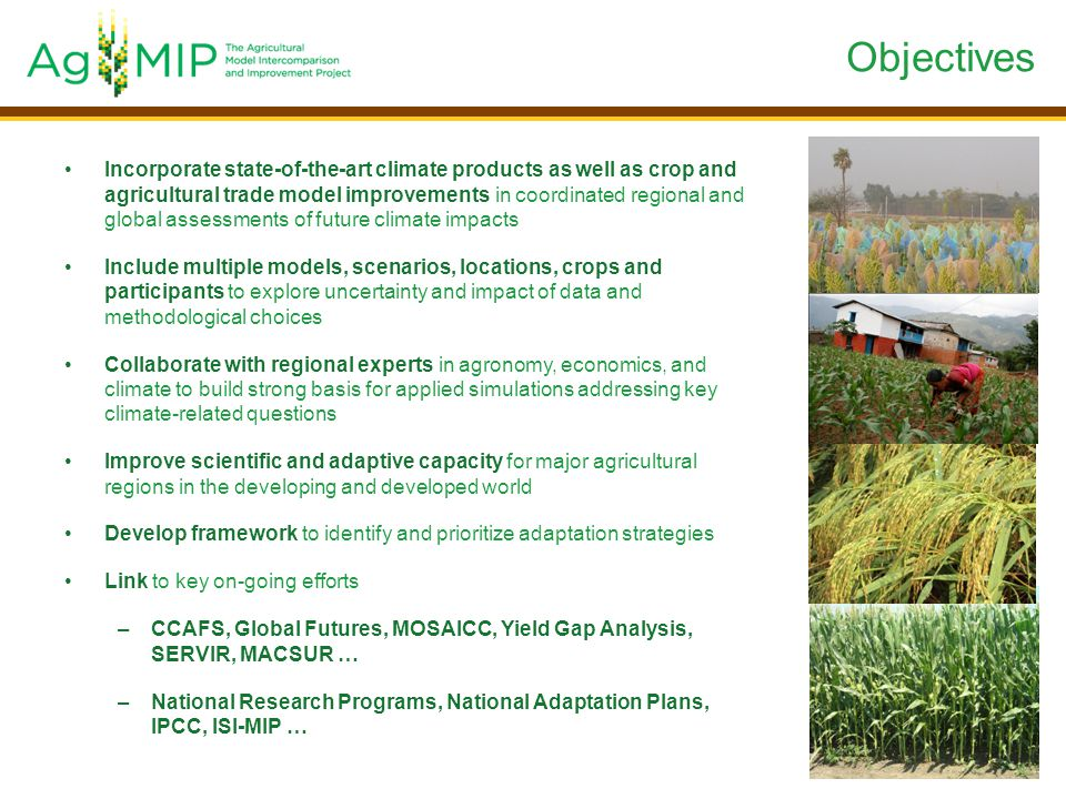 Incorporate state-of-the-art climate products as well as crop and agricultural trade model improvements in coordinated regional and global assessments of future climate impacts Include multiple models, scenarios, locations, crops and participants to explore uncertainty and impact of data and methodological choices Collaborate with regional experts in agronomy, economics, and climate to build strong basis for applied simulations addressing key climate-related questions Improve scientific and adaptive capacity for major agricultural regions in the developing and developed world Develop framework to identify and prioritize adaptation strategies Link to key on-going efforts –CCAFS, Global Futures, MOSAICC, Yield Gap Analysis, SERVIR, MACSUR … –National Research Programs, National Adaptation Plans, IPCC, ISI-MIP … Objectives