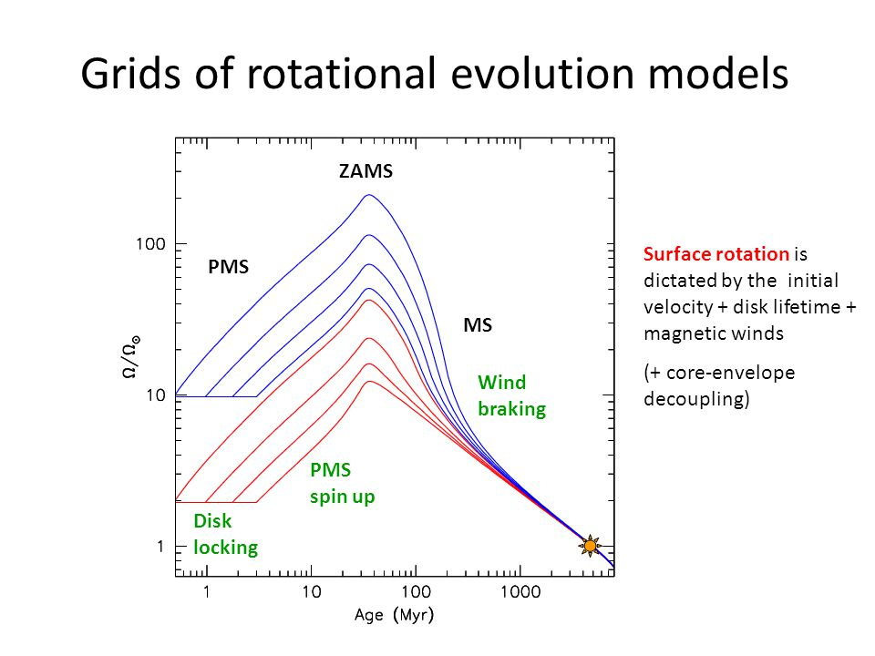 Grids of rotational evolution models Disk locking MS PMS spin up Wind braking PMS ZAMS Surface rotation is dictated by the initial velocity + disk lifetime + magnetic winds (+ core-envelope decoupling)