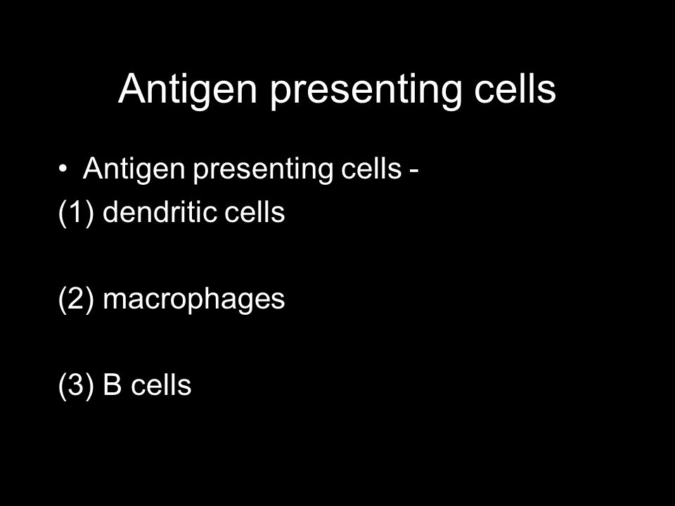 Antigen presenting cells Antigen presenting cells - (1) dendritic cells (2) macrophages (3) B cells