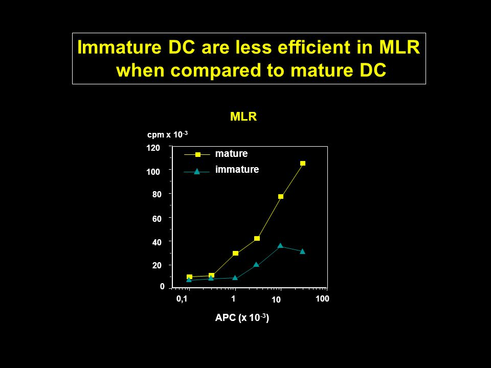 Immature DC are less efficient in MLR when compared to mature DC 20 40 60 80 100 120 100 10 10,1 cpm x 10 -3 0 APC (x 10 -3 ) MLR mature immature