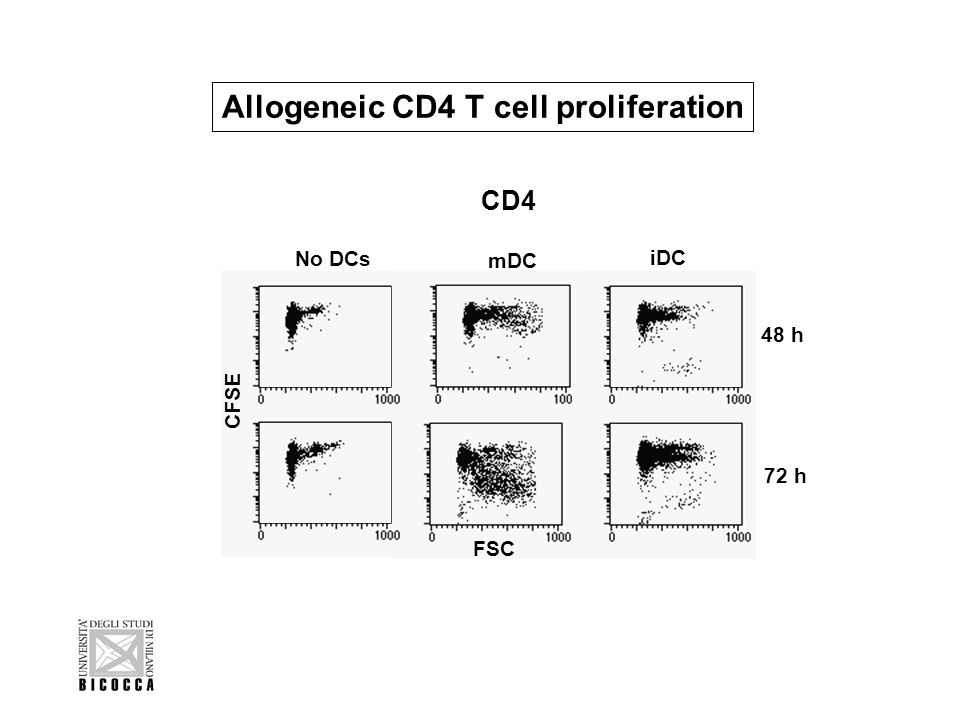 . mDC iDC No DCs CD4 CFSE 48 h 72 h FSC Allogeneic CD4 T cell proliferation