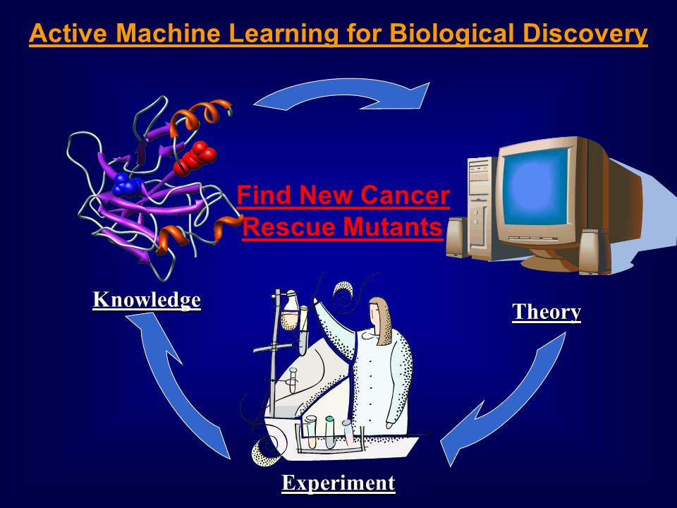 Theory Find New Cancer Rescue Mutants Knowledge Experiment Active Machine Learning for Biological Discovery