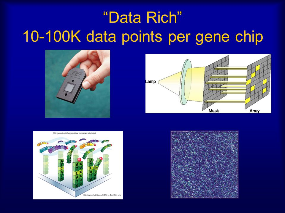 Characteristics of Biomedical Data Noise!.=> need robust analysis methods Little or no theory.