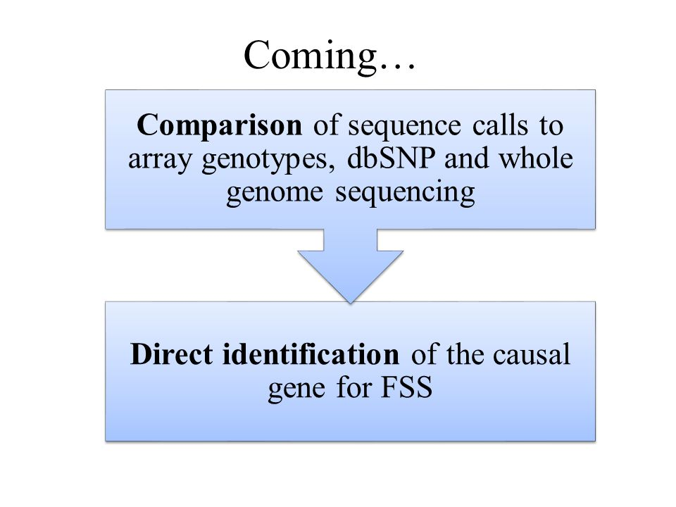 Coming… Direct identification of the causal gene for FSS Comparison of sequence calls to array genotypes, dbSNP and whole genome sequencing