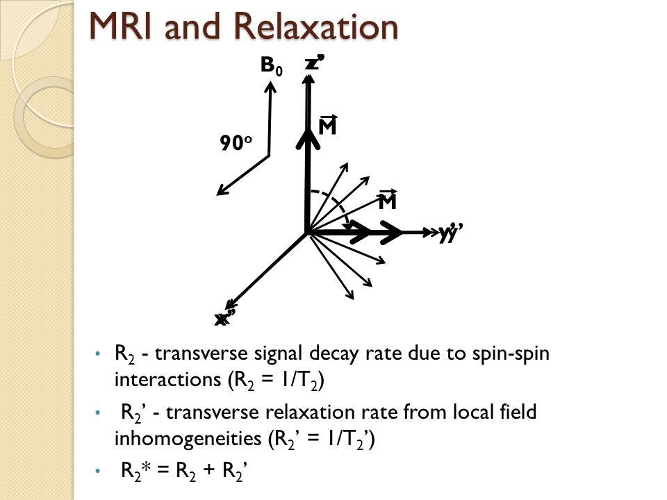 x' y' z' M MRI and Relaxation x' y' z' x' y' z' M 90 o R 2 - transverse signal decay rate due to spin-spin interactions (R 2 = 1/T 2 ) R 2 ' - transverse relaxation rate from local field inhomogeneities (R 2 ' = 1/T 2 ') R 2 * = R 2 + R 2 ' B0B0