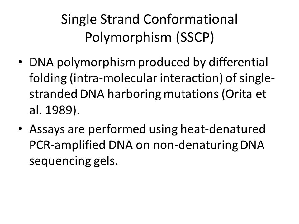 Single Strand Conformational Polymorphism (SSCP) DNA polymorphism produced by differential folding (intra-molecular interaction) of single- stranded D