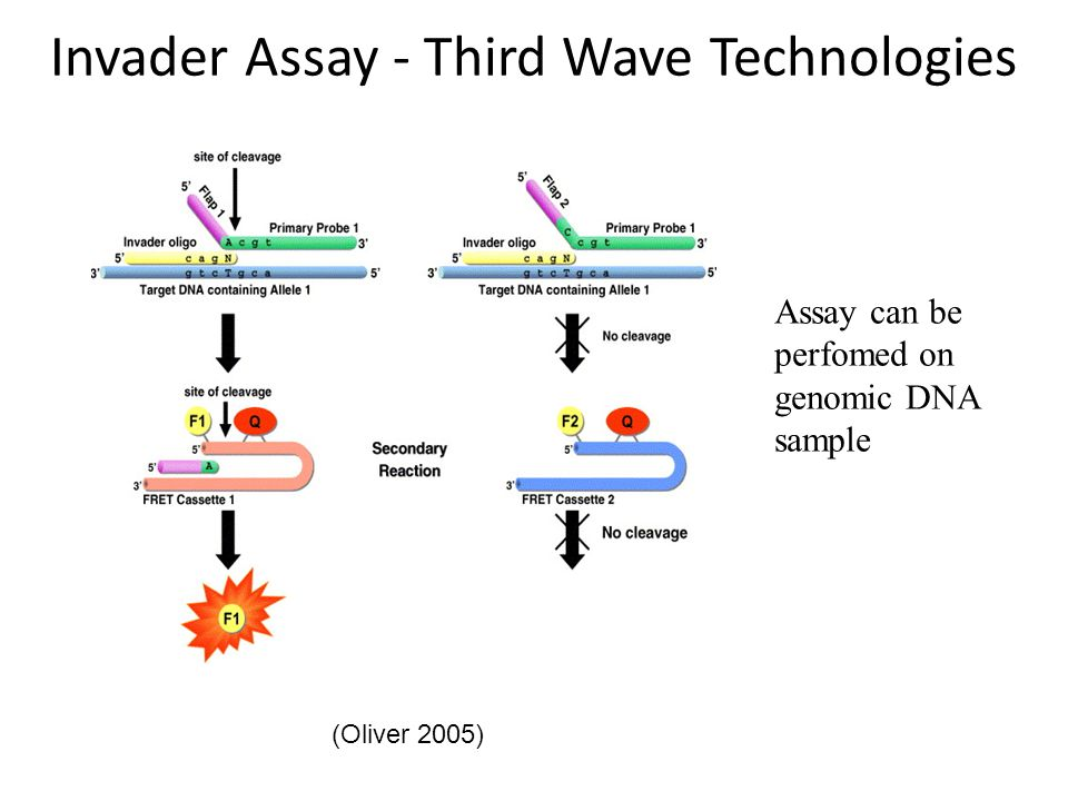 Invader Assay - Third Wave Technologies (Oliver 2005) Assay can be perfomed on genomic DNA sample
