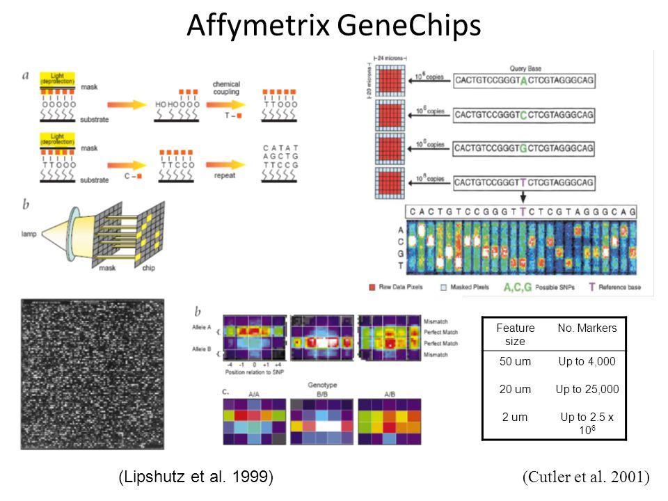 Affymetrix GeneChips (Lipshutz et al.1999) (Cutler et al.