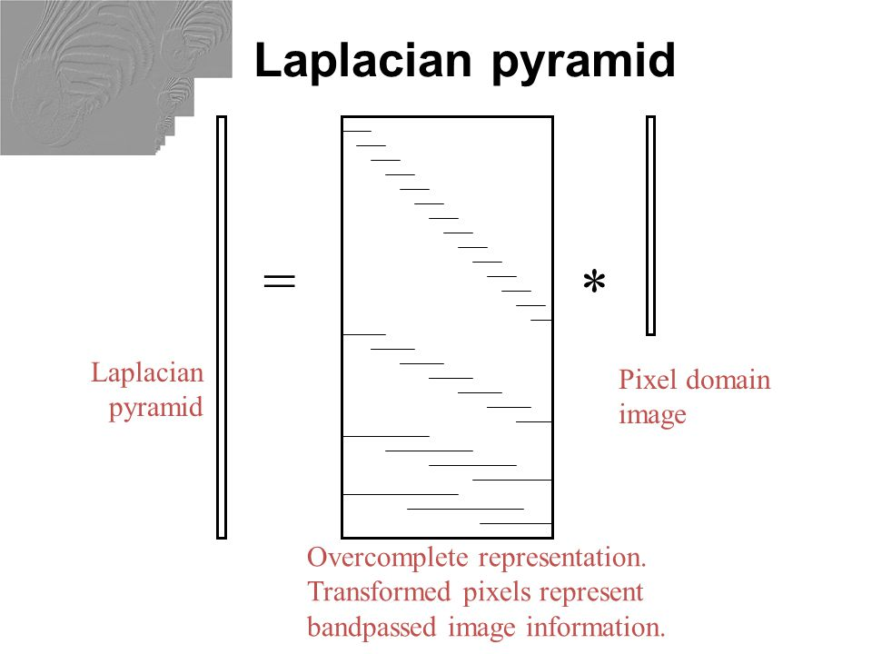 Hybrid Image in Laplacian Pyramid High frequency  Low frequency Extra points for project 1