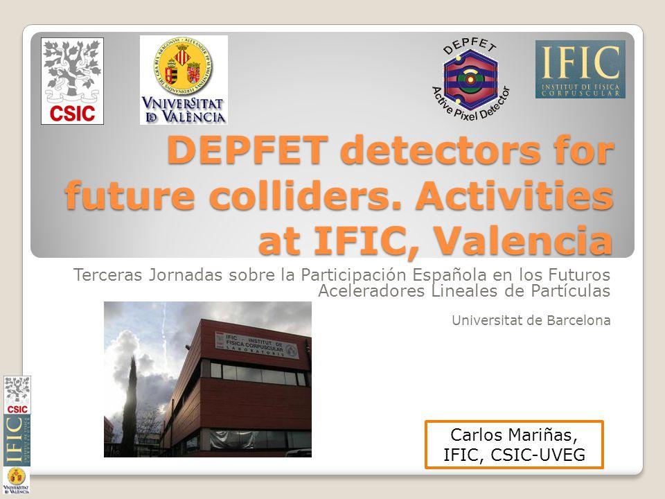 DEPFET detectors for future colliders.