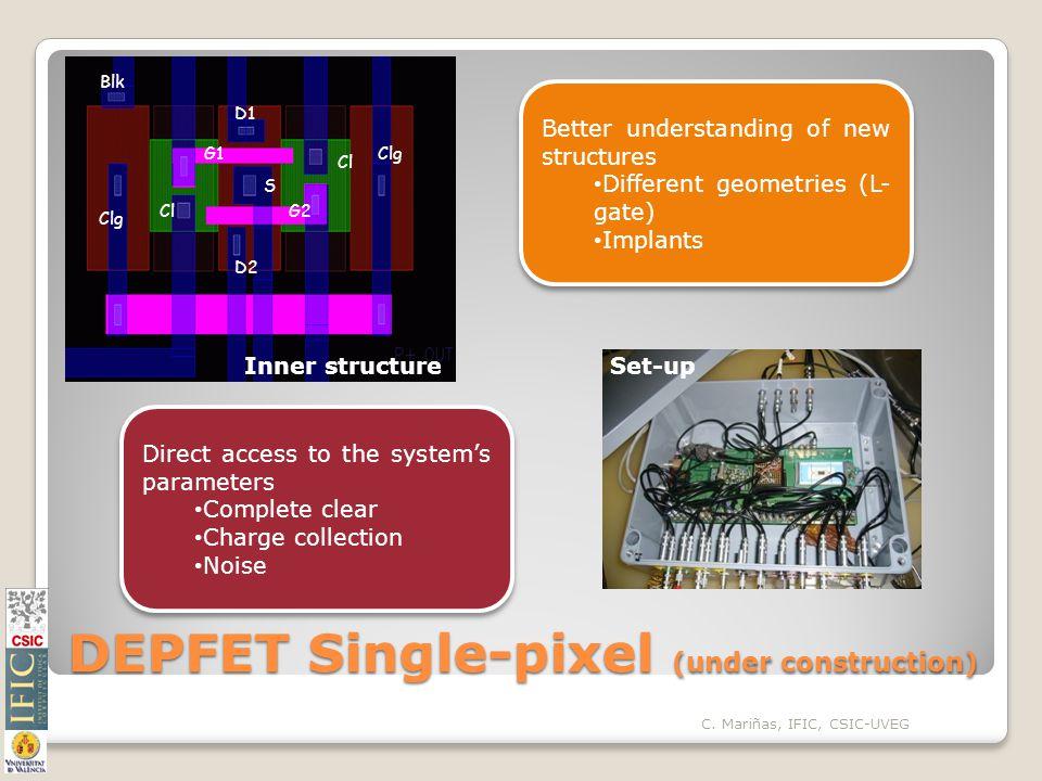 DEPFET Single-pixel (under construction) D1 D2 S G1 G2Cl Clg Blk Clg C.
