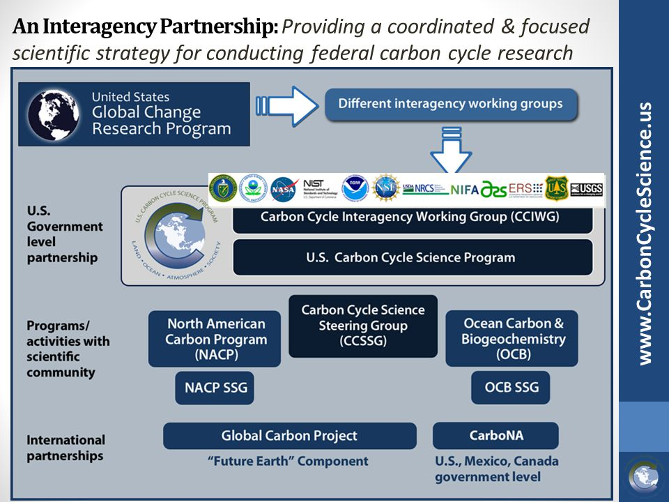 An Interagency Partnership: Providing a coordinated & focused scientific strategy for conducting federal carbon cycle research www.CarbonCycleScience.
