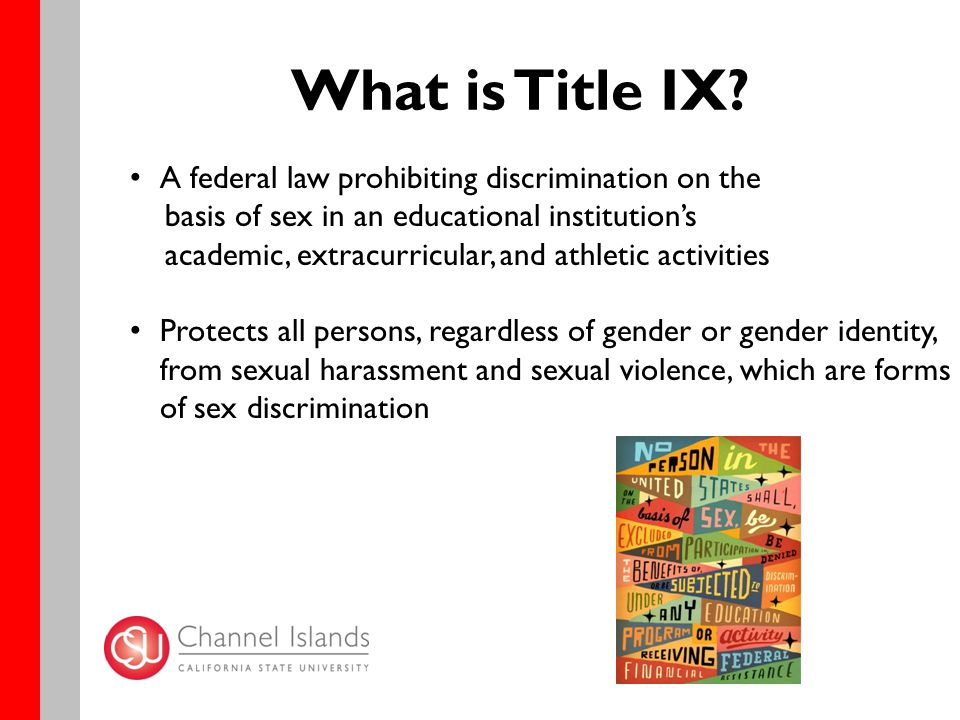 What is Title IX.