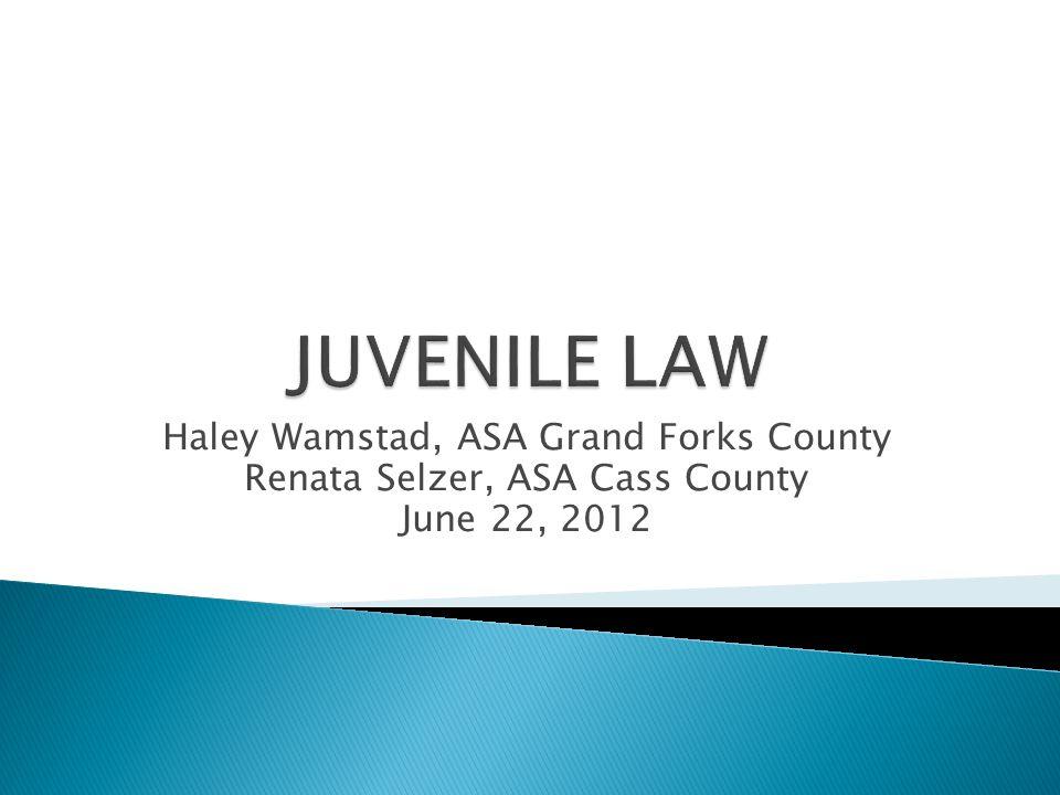 Haley Wamstad, ASA Grand Forks County Renata Selzer, ASA Cass County June 22, 2012