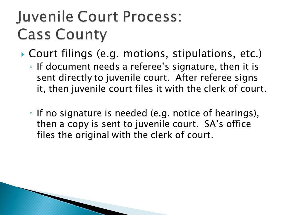  Court filings (e.g.