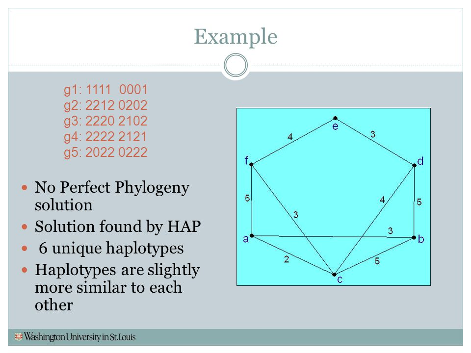 Example g1: 1111 0001 g2: 2212 0202 g3: 2220 2102 g4: 2222 2121 g5: 2022 0222 No Perfect Phylogeny solution Solution found by HAP 6 unique haplotypes