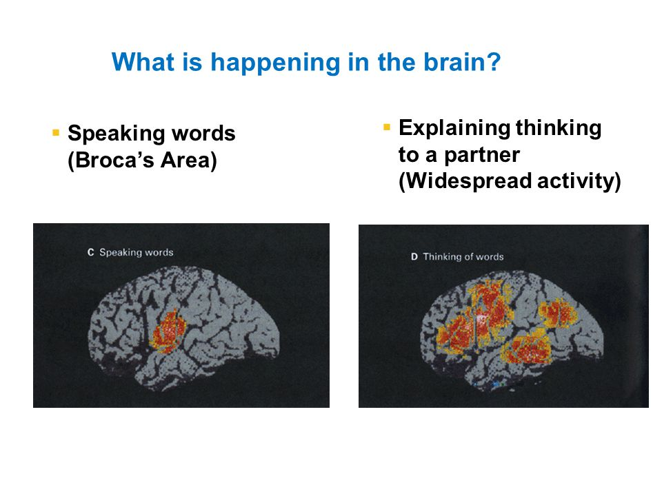 What is happening in the brain.
