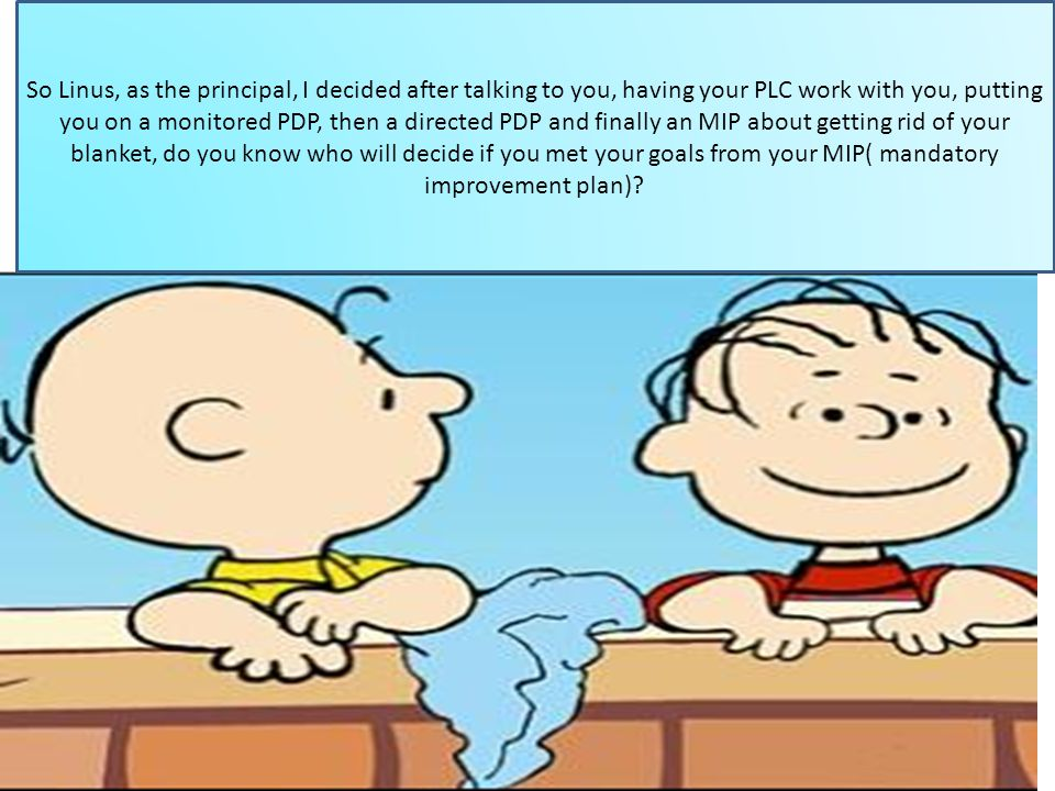 So Linus, as the principal, I decided after talking to you, having your PLC work with you, putting you on a monitored PDP, then a directed PDP and finally an MIP about getting rid of your blanket, do you know who will decide if you met your goals from your MIP( mandatory improvement plan)