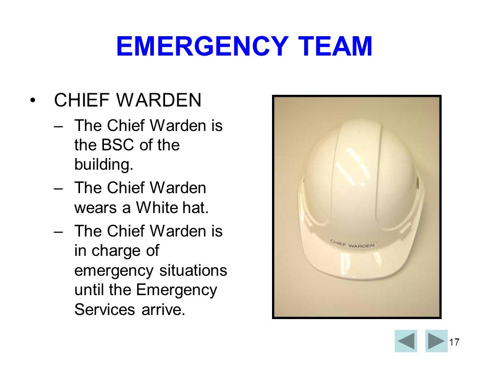 16 EMERGENCY CONTROL ORGANIZATION CHIEF WARDENDEPUTY CHIEF WARDEN COMMUNICATION OFFICER