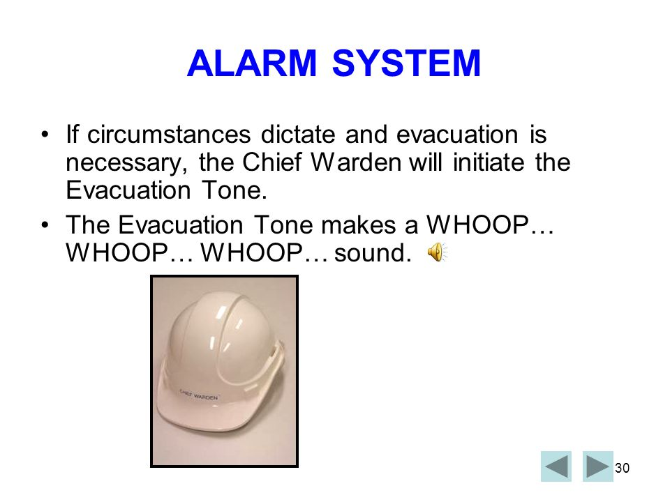 29 ALARM SYSTEM Zone Wardens can evacuate immediately if vicinity circumstances dictate.