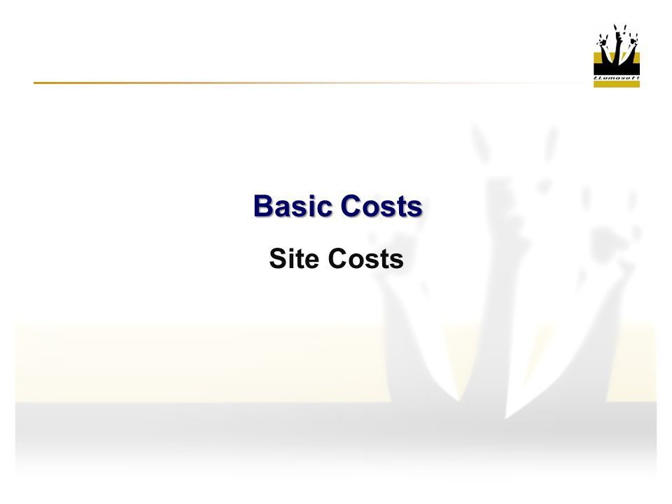 Site Costs Basic Costs