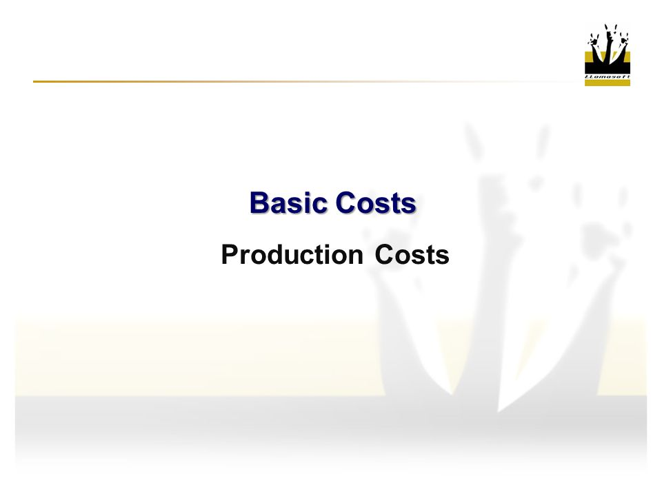 Production Costs Basic Costs