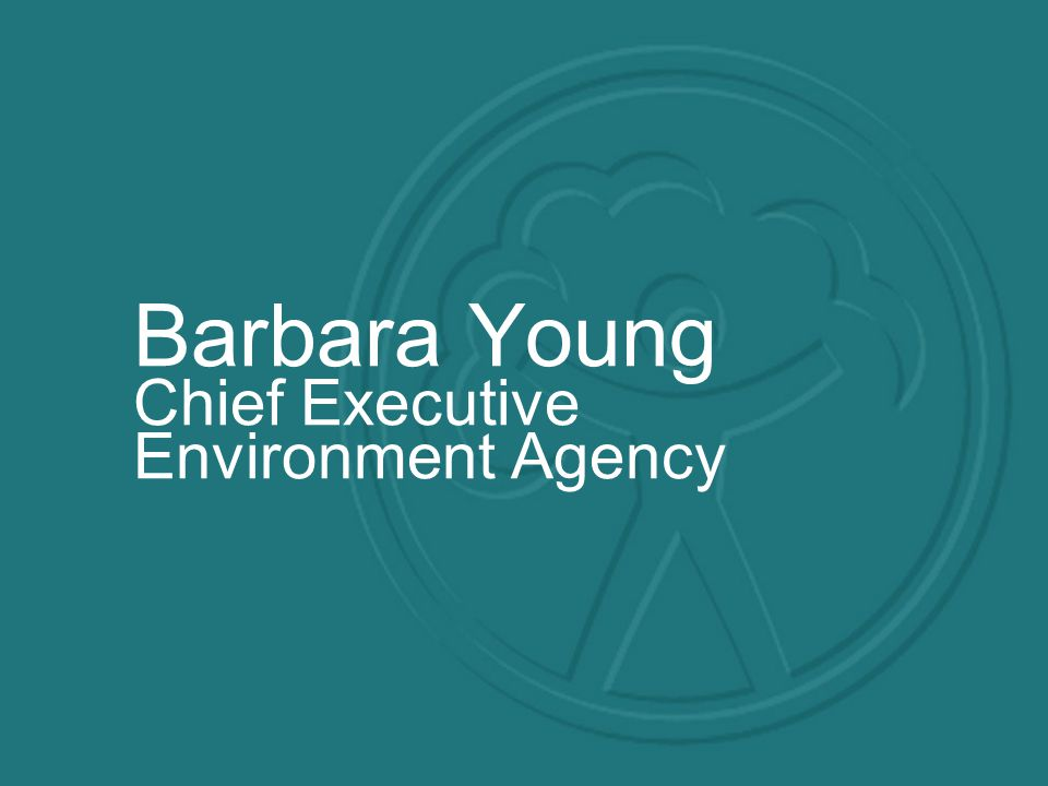 Barbara Young Chief Executive Environment Agency
