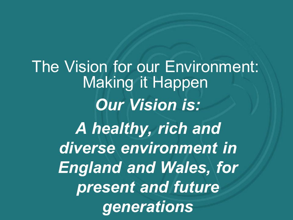 The Vision for our Environment: Making it Happen Our Vision is: A healthy, rich and diverse environment in England and Wales, for present and future generations
