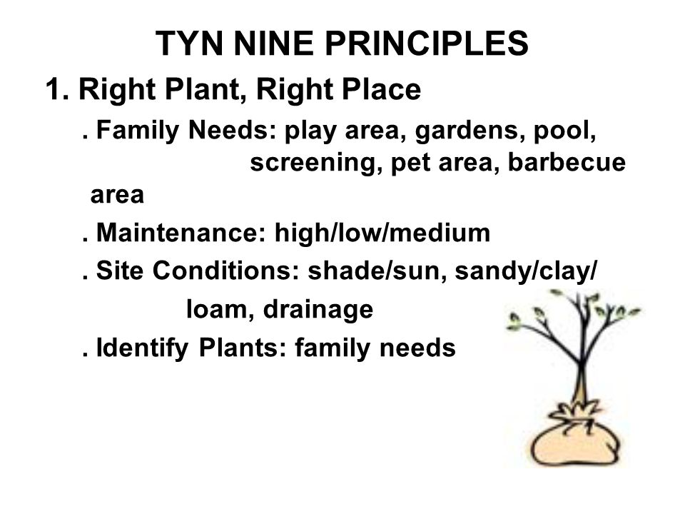 TN Yards & Neighborhoods Yardstick for Tennessee Yard Done Right 9.