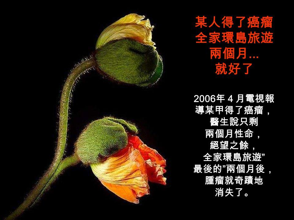 電視報導放棄美國籍但歸化台灣的律師文魯彬在 2003 年得 了肺癌,醫生說他只剩半年壽命,但是現在已找不到癌瘤。 他說 3 年來他少吃蛋白質 ( 肉類 ) ,改吃排毒早餐 ( 地瓜+水果+蔬菜+糙米飯 ) 以及每天喝 2,000cc 的蘋果汁,心情放輕鬆,奇蹟式地已和 肺癌說拜拜了。