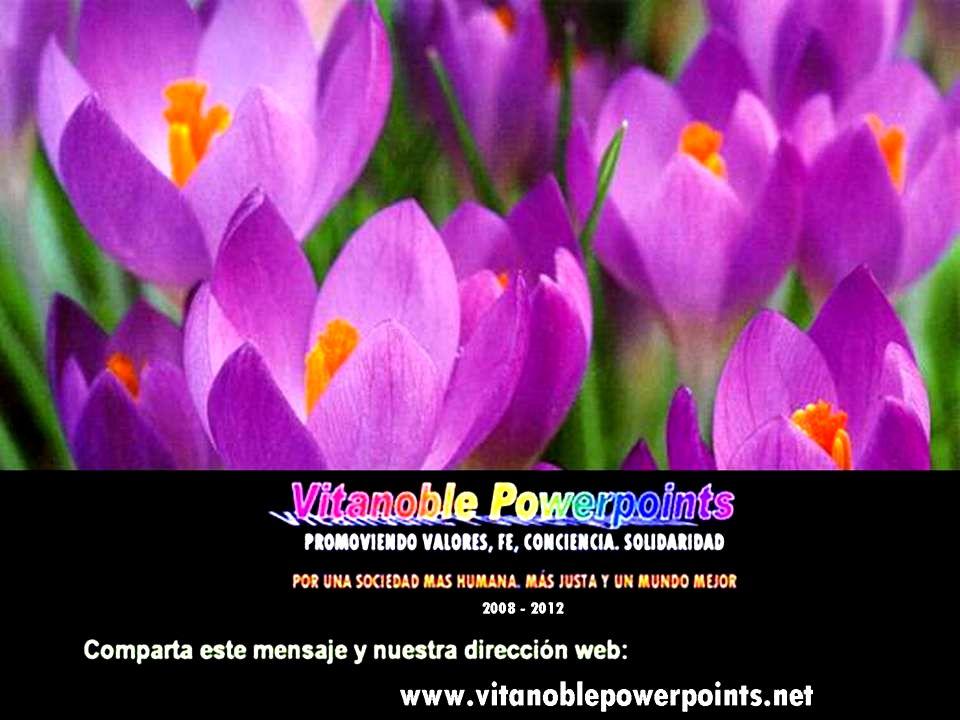 Vita Noble Powerpoints © P PP Pedro Llusá, 23 Noviembre 2008 Música: Sarah Brightman & Ennio Morricone Ave María Fin