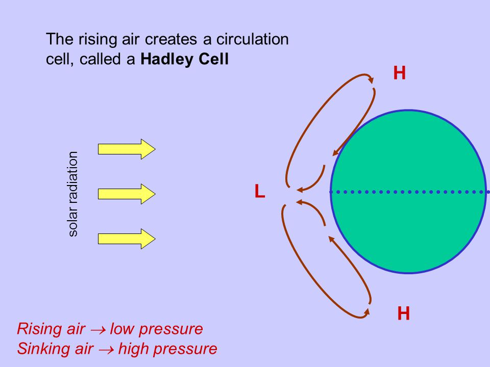 The rising air creates a circulation cell, called a Hadley Cell solar radiation L H H Rising air  low pressure Sinking air  high pressure