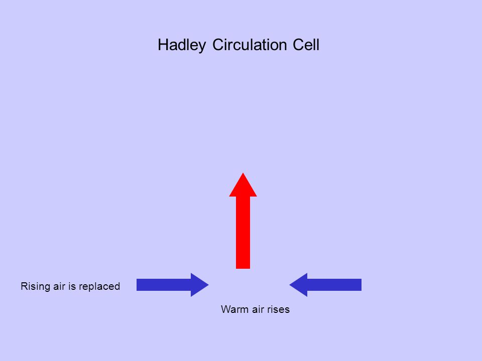 Warm air rises Rising air is replaced Hadley Circulation Cell