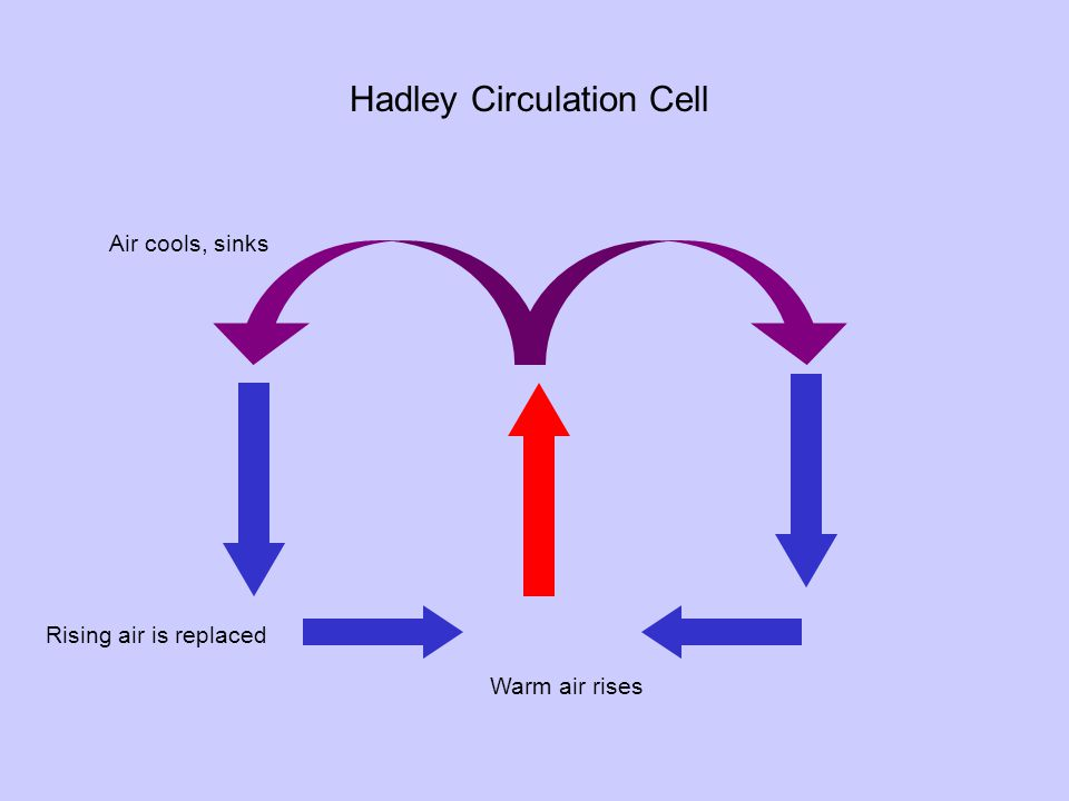 Warm air rises Air cools, sinks Rising air is replaced Hadley Circulation Cell
