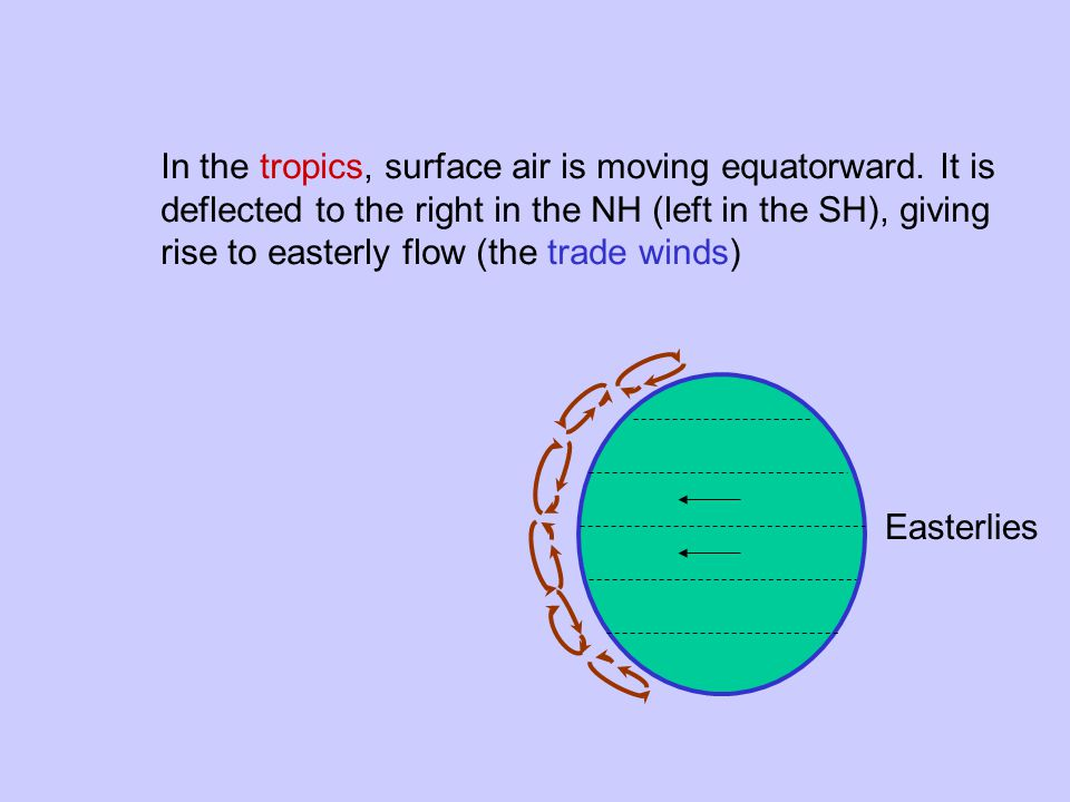 In the tropics, surface air is moving equatorward.