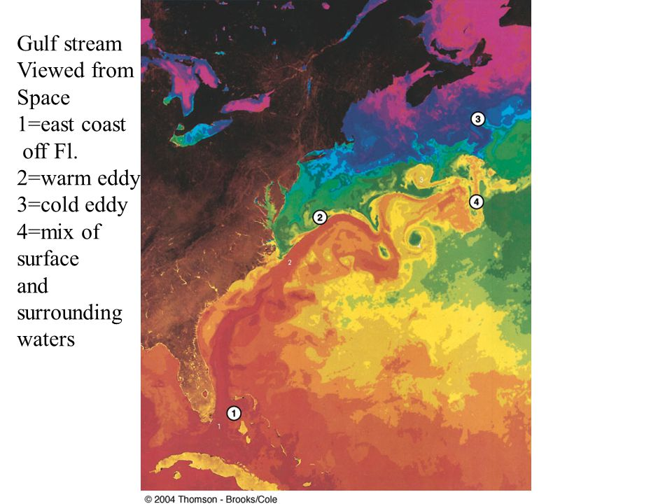Gulf stream Viewed from Space 1=east coast off Fl. 2=warm eddy 3=cold eddy 4=mix of surface and surrounding waters