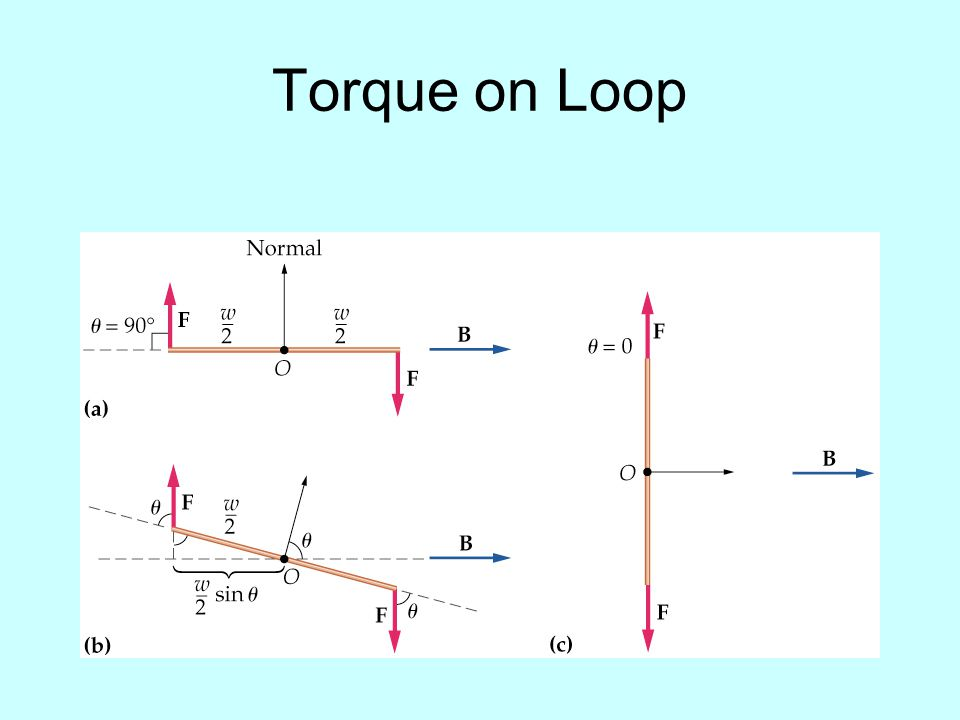 Torque on Loop