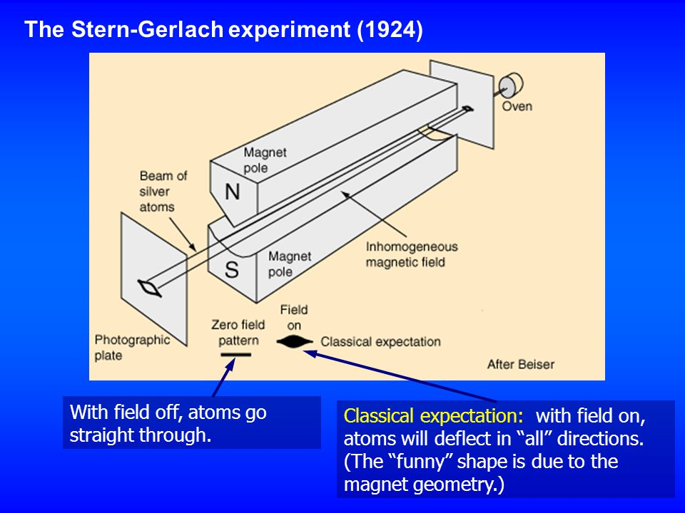 "The Stern-Gerlach experiment (1924) With field off, atoms go straight through. Classical expectation: with field on, atoms will deflect in ""all"" direc"