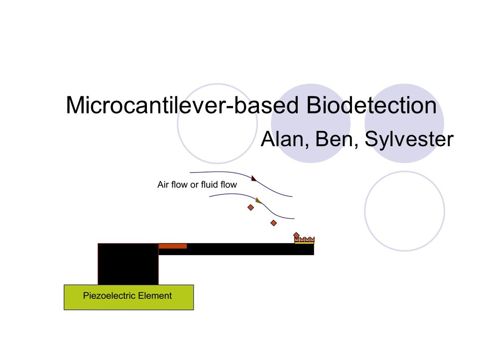 Microcantilever-based Biodetection Alan, Ben, Sylvester