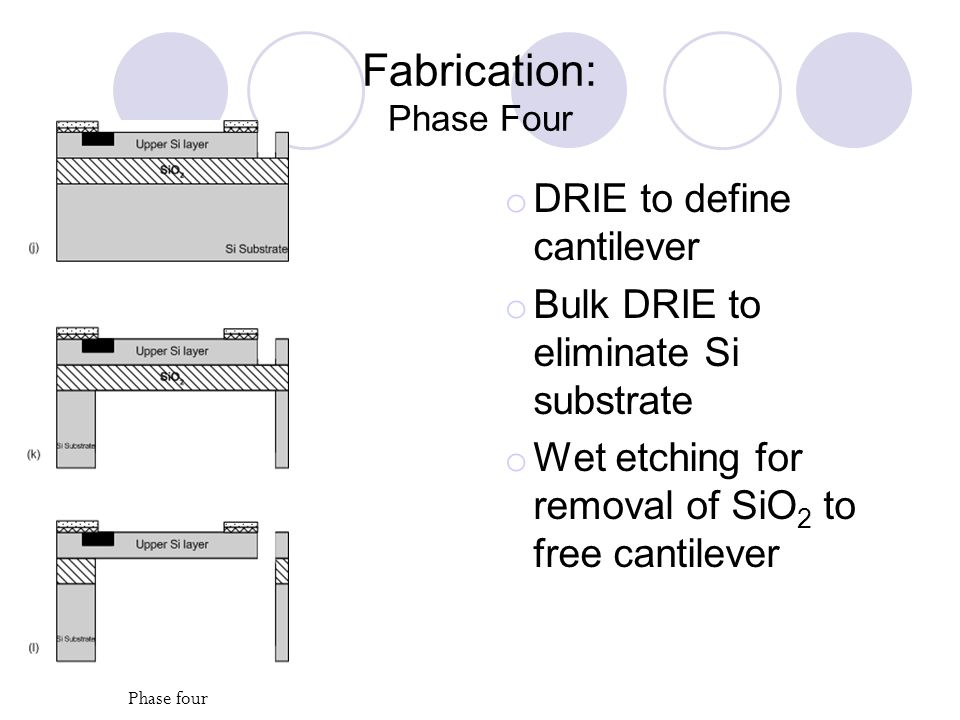 Fabrication: Phase Four o DRIE to define cantilever o Bulk DRIE to eliminate Si substrate o Wet etching for removal of SiO 2 to free cantilever Phase four