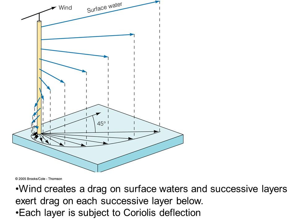 Wind creates a drag on surface waters and successive layers exert drag on each successive layer below.