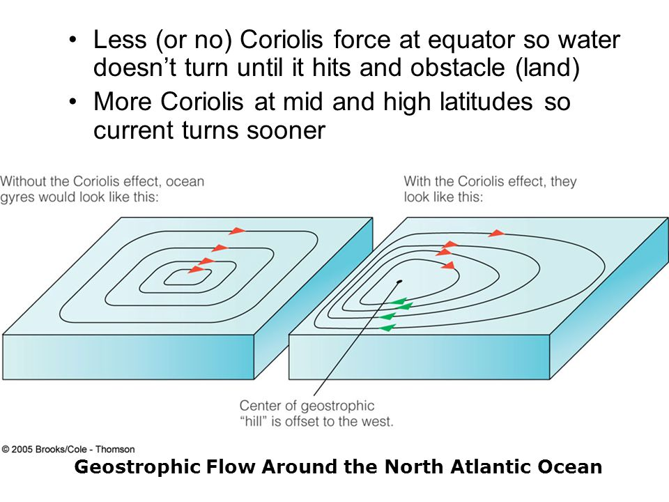 Less (or no) Coriolis force at equator so water doesn't turn until it hits and obstacle (land) More Coriolis at mid and high latitudes so current turns sooner Geostrophic Flow Around the North Atlantic Ocean