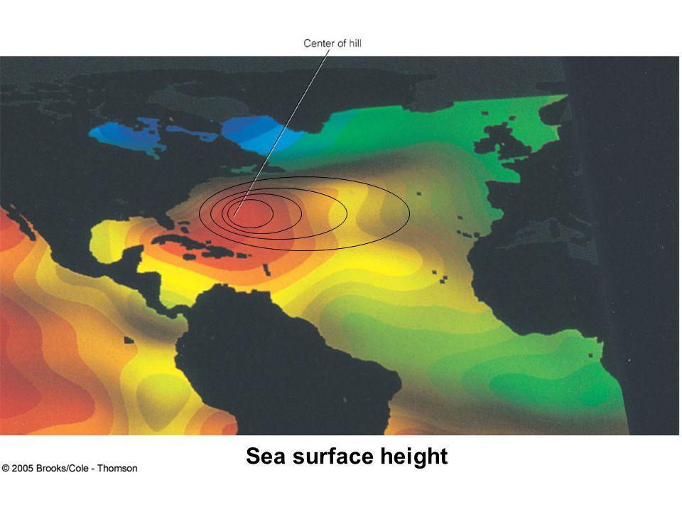 Sea surface height