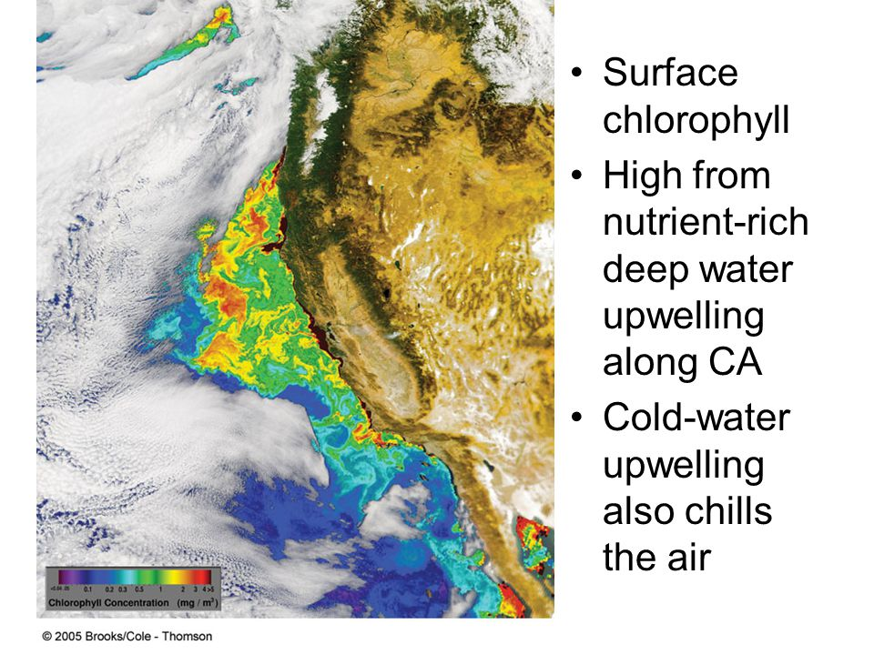 Surface chlorophyll High from nutrient-rich deep water upwelling along CA Cold-water upwelling also chills the air